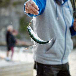 Man håller upp en liten fångad fisk.